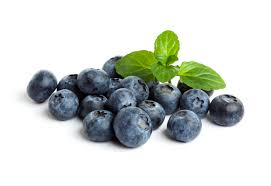 Blueberry Punnet Only