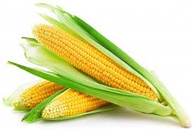 Corn Only