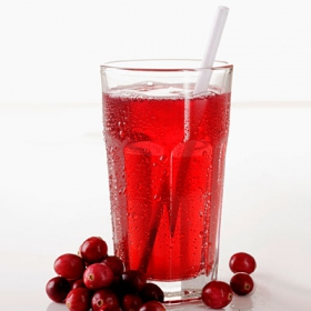Catering Cranberry Juice 14X250